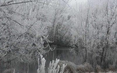 L'hiver aux alentours de Twizel
